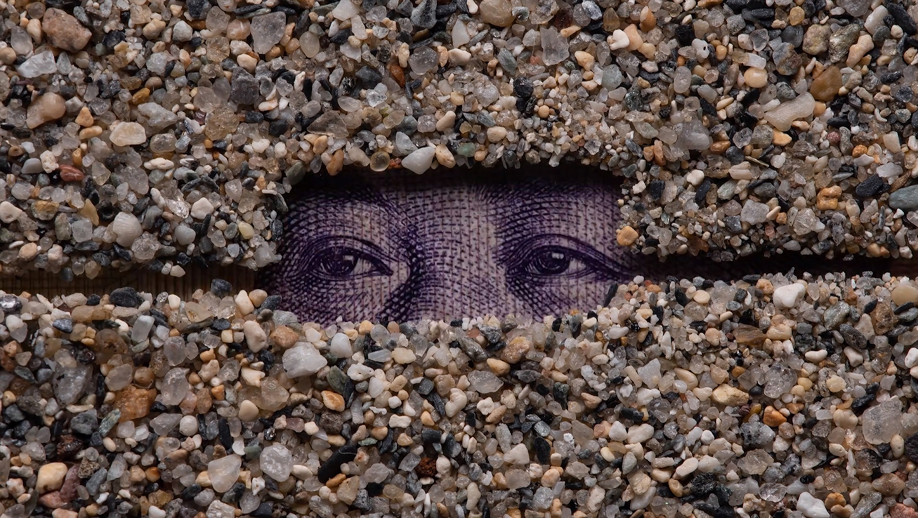 It takes 24 individual frames to fill up one second of film. Pictured: a still from Parks' Foreign Exchange, featuring multiple currencies and pieces of sand from around the world. Images courtesy of Corrie Francis Parks.