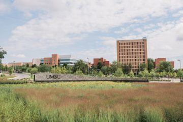 The greenery in front of a UMBC sign with a Maryland flag pattern background